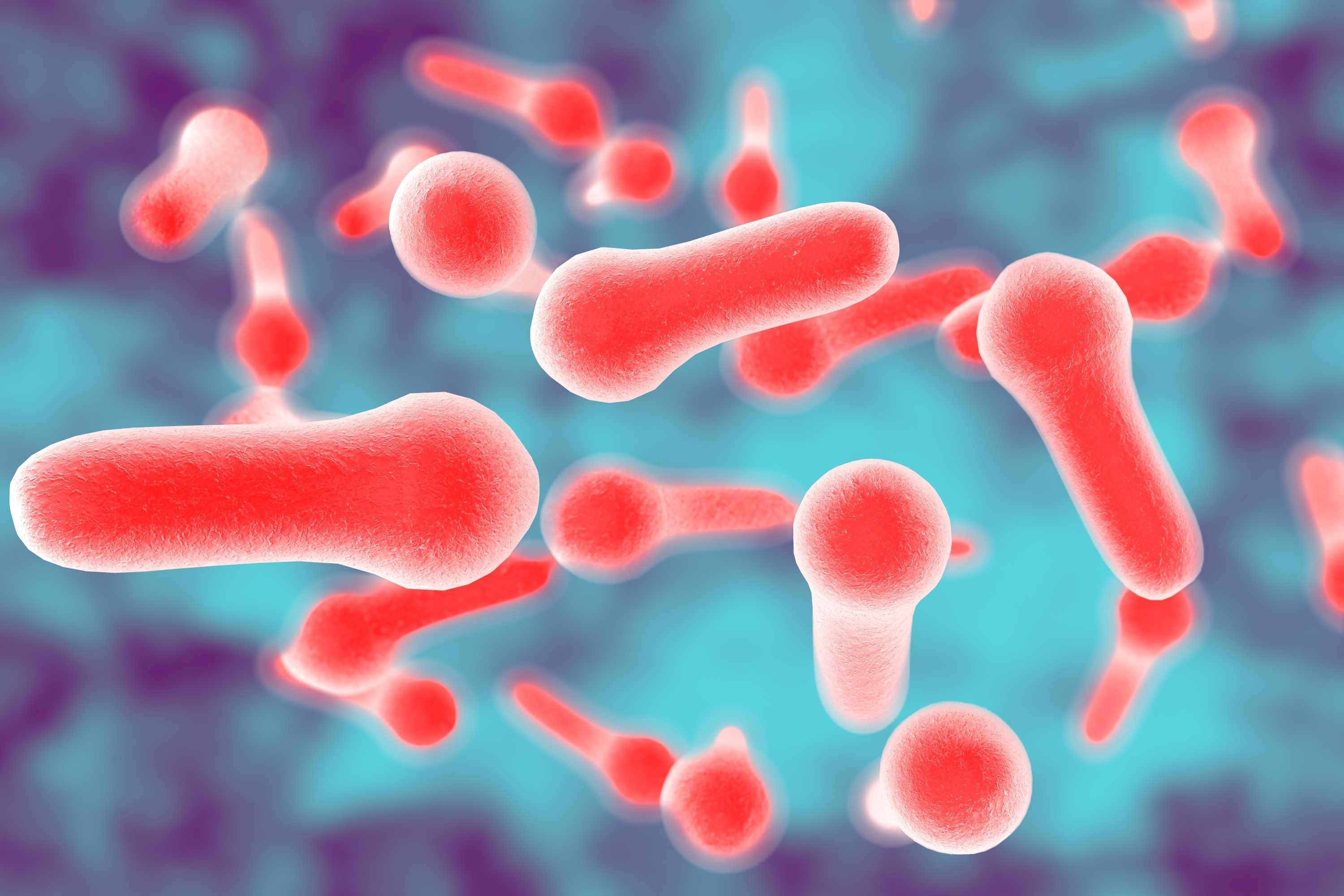botulism is caused by bacteria toxins mayo clinic news network