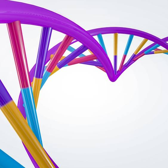 colorful 3D DNA helix