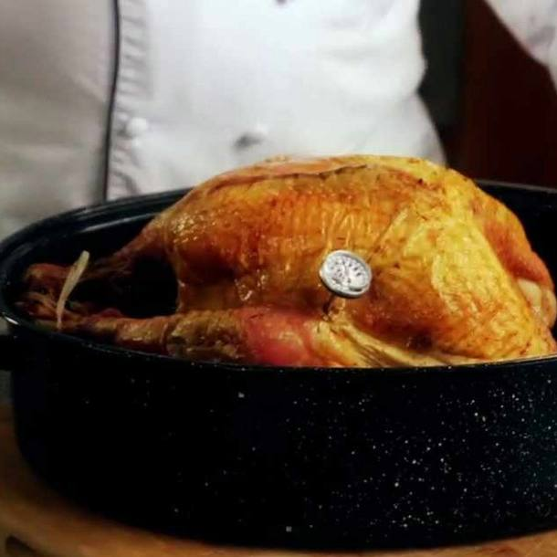 a cooked turkey in a roasting pan with a thermometer