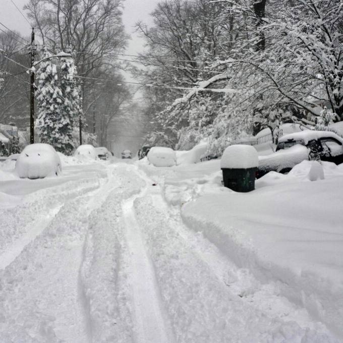 winter scene of a neighborhood after a snowstorm with trees and cars covered in snow