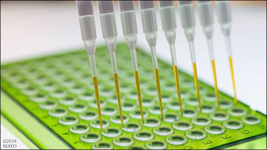 a laboratory photo of immunotherapy research or testing