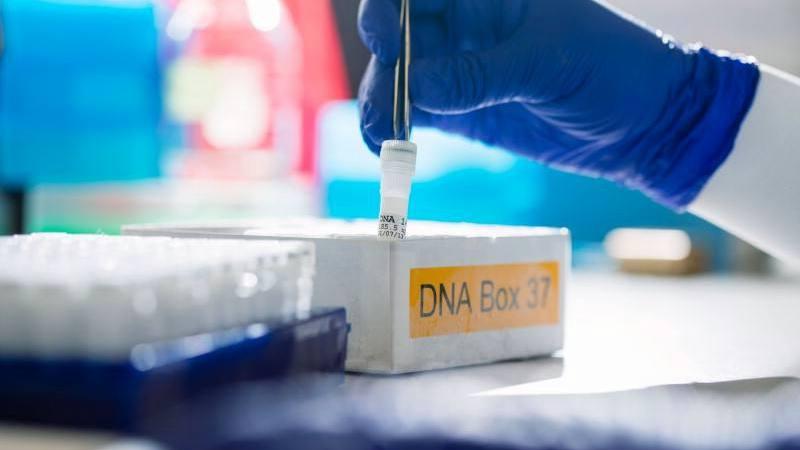 Mano de un investigador del laboratorio cubierta con un guante azul para trabajar con tubos de ensayo de ADN