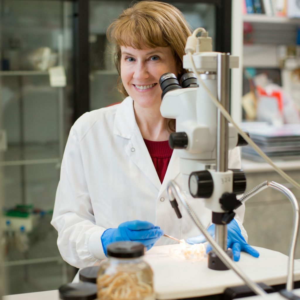 Dr. Bobbi Pritt in her pathology lab with a microscope