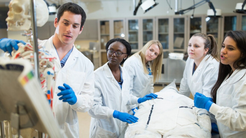Mayo Clinic Alix School of Medicine has long been recognized as a leader in  medical education. One of the original top schools selected nationally by  the ... e045f69fe07