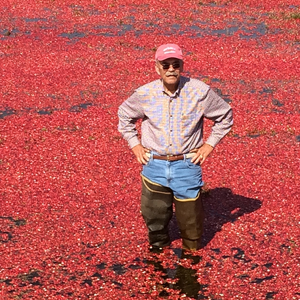 cranberry farmer Guy Gottschalk standing a cranberry bog