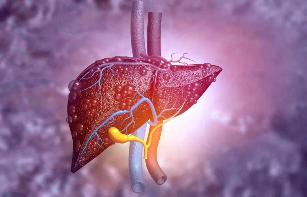 Mayo Clinic researchers identify potential new therapy for liver diseases