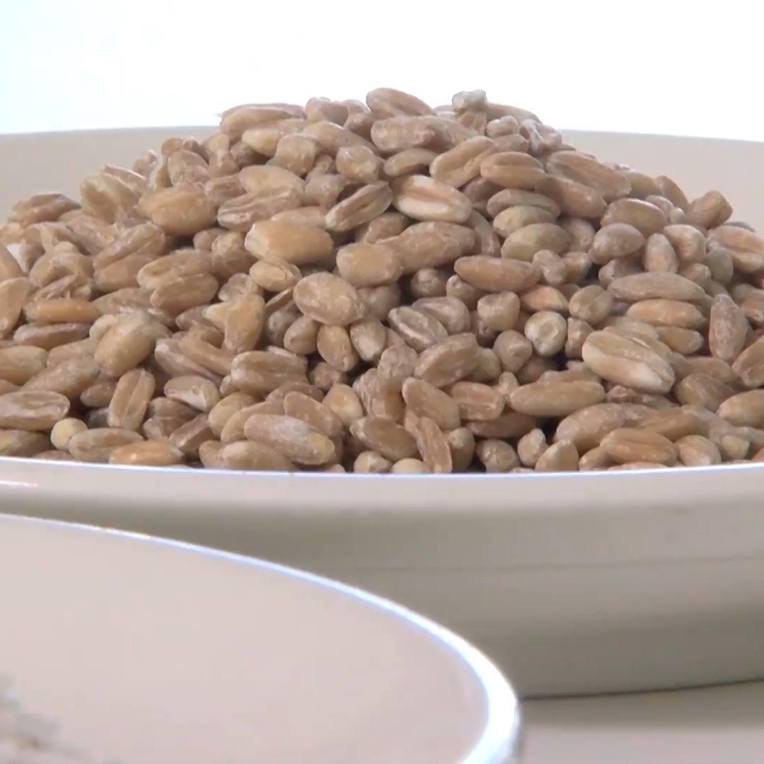 A bowl of farro