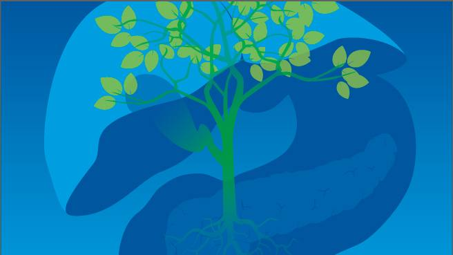 illustration of a green leafy tree with a blue background that has an abstract drawing of a liver