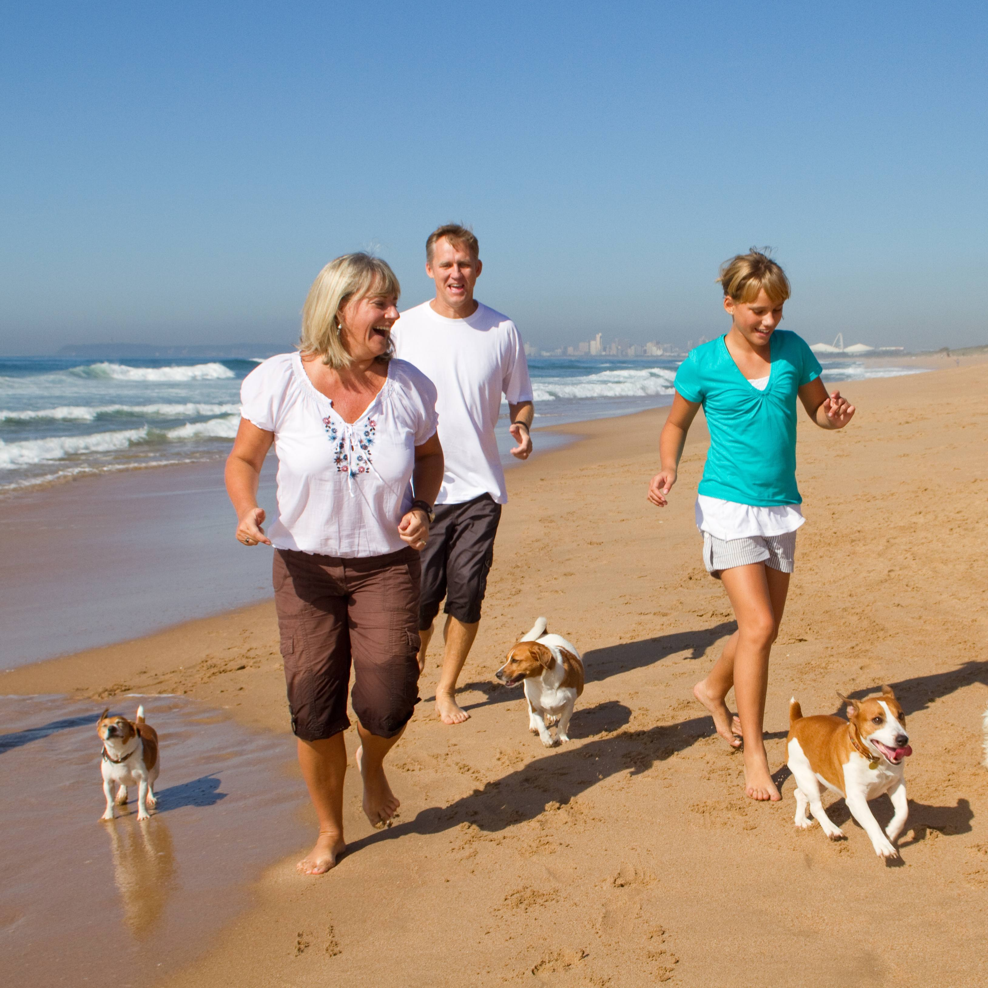 a group of Caucasian people, perhaps a family, walking on the beach in the sunshine with their dogs