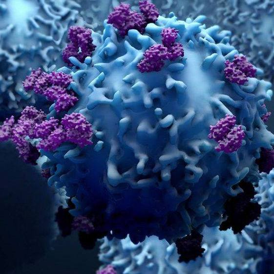 illustrated graphic of cancer cells