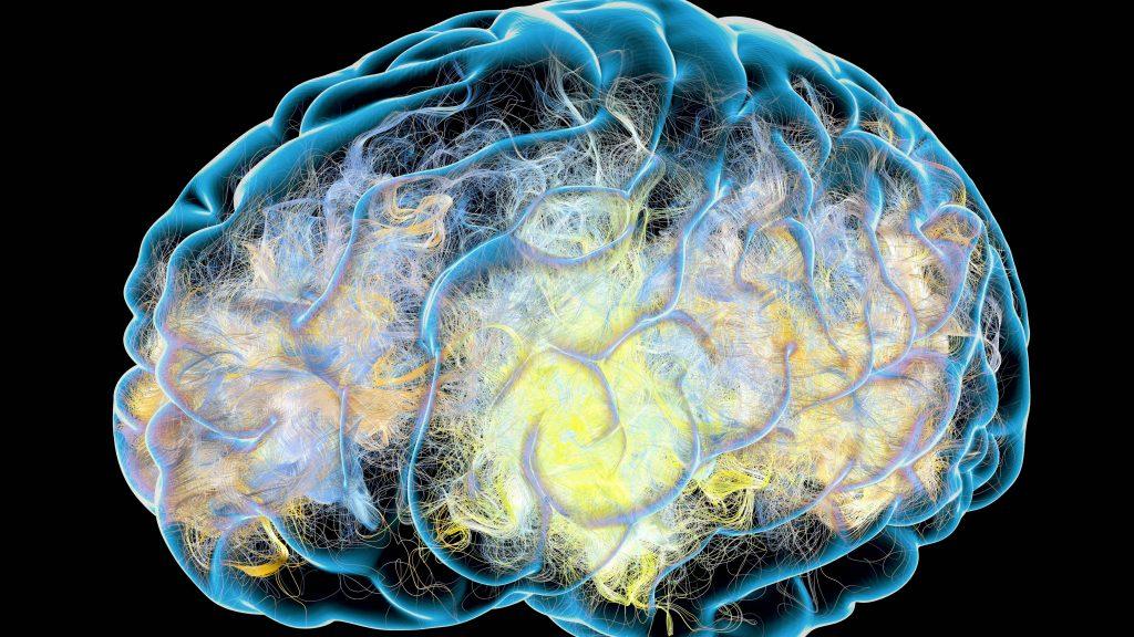 Advertencia del experto: prevenir una encefalitis es otra razón para vacunarse contra la COVID-19