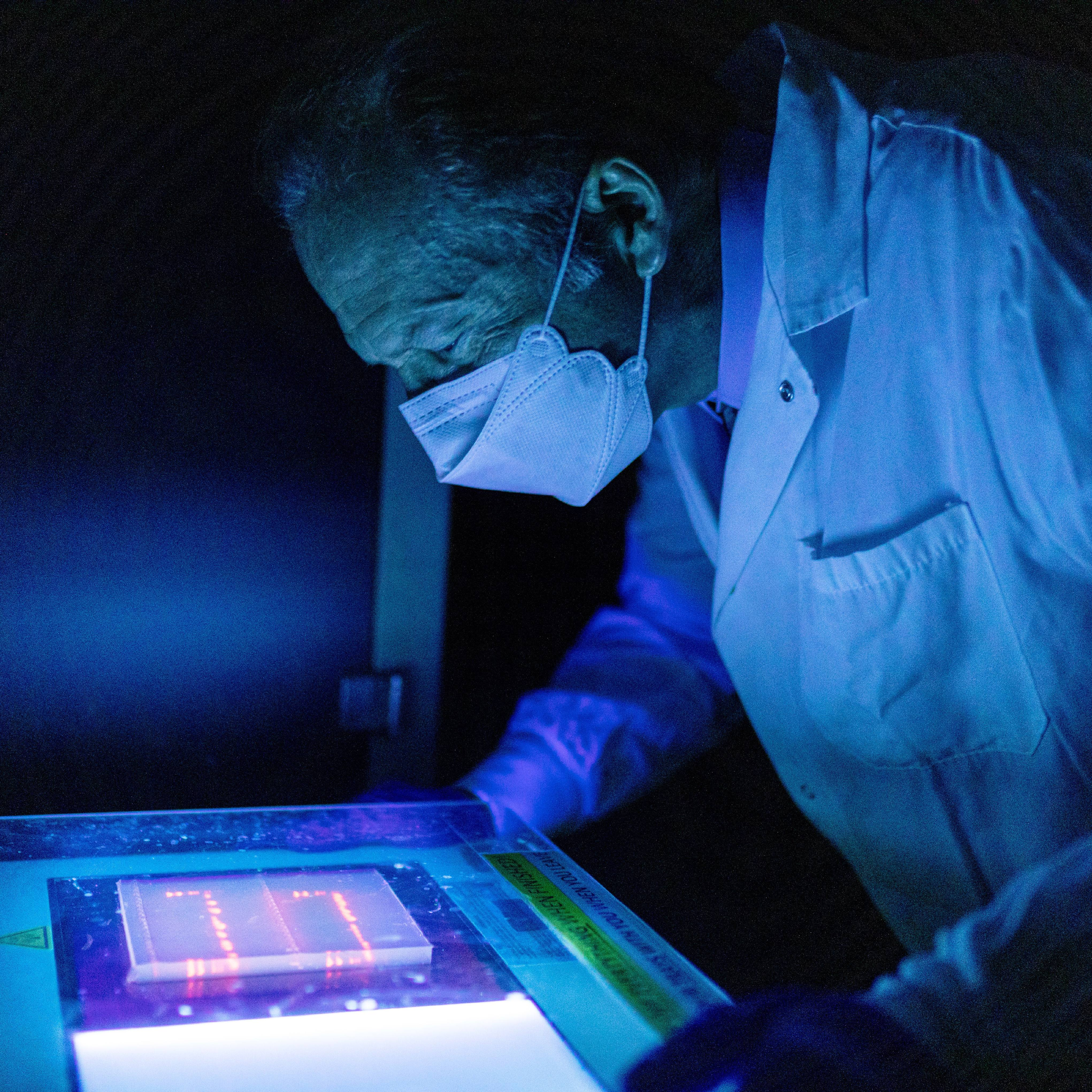 Researcher Michael Barry, Ph.D., in a lab looking at cut pieces of DNA in a blue light to see if they are the correct size of the viral genes the team wants to use.