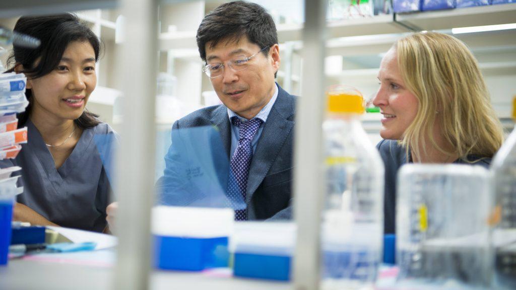 Dr. Guojun Bu y colegas en el laboratorio de investigación