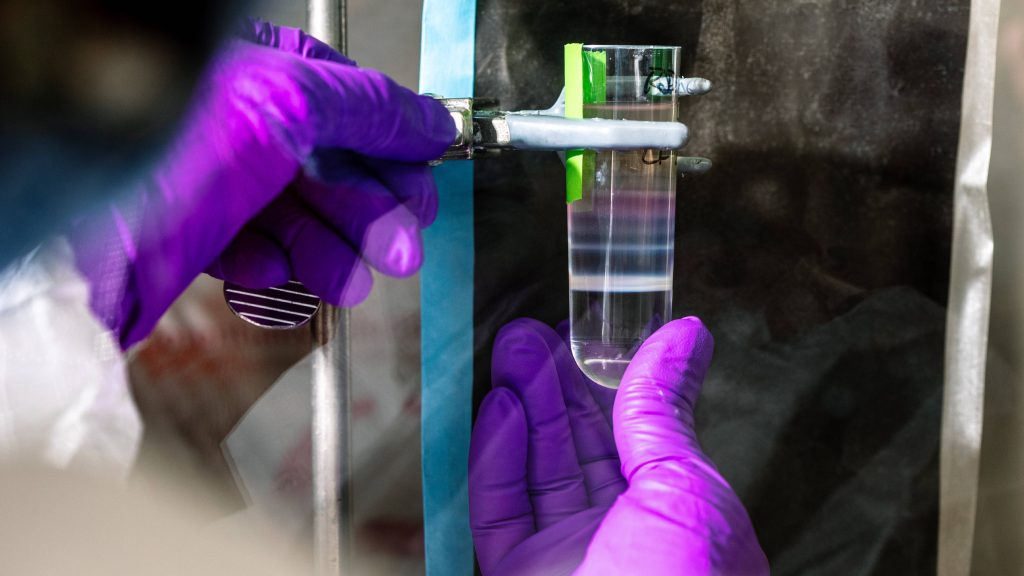 A Mayo Clinic lab member, wearing purple laboratory gloves, is purifying an adenovirus vector for preclinical testing.
