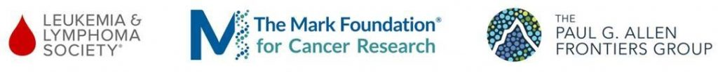 The Mark Foundation Grants