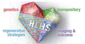 HLHS