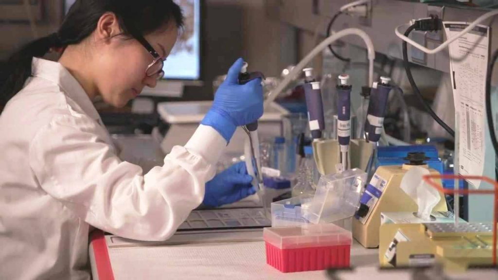 Mayo Clinic to offer advanced degree in regenerative sciences