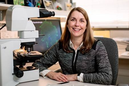 From the researcher: Dr. Scarisbrick explains cholesterol, research and regeneration
