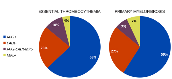 Figure. Distribution of JAK2, CALR, and MPL mutations in essential thrombocythemia (ET) and primary myelofibrosis (PMF). Data summarized from references 1-6.