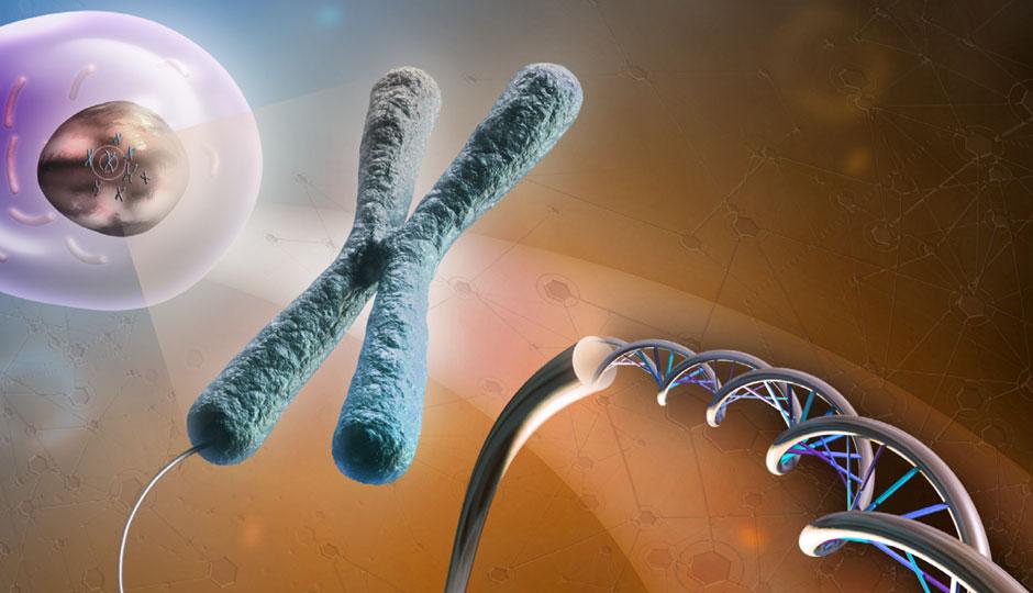 cytogenetics-feature