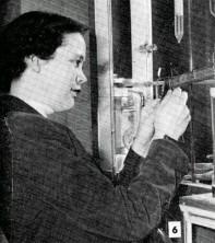 Bernice Borrman — Section of Biophysics