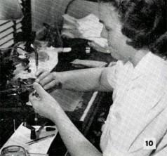 Kay Sanders — Pathology Laboratory Colonial