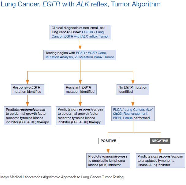 lungcanceralgorithm