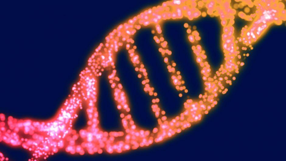 genetics2-960x540