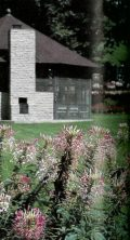 In use at Saint Marys for the first time this year, Cleome is one of the many colorful flowers adorning the grounds.