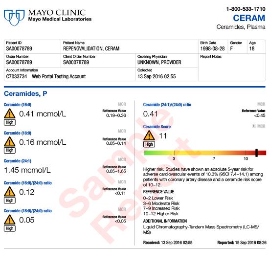 Report Example: CERAM