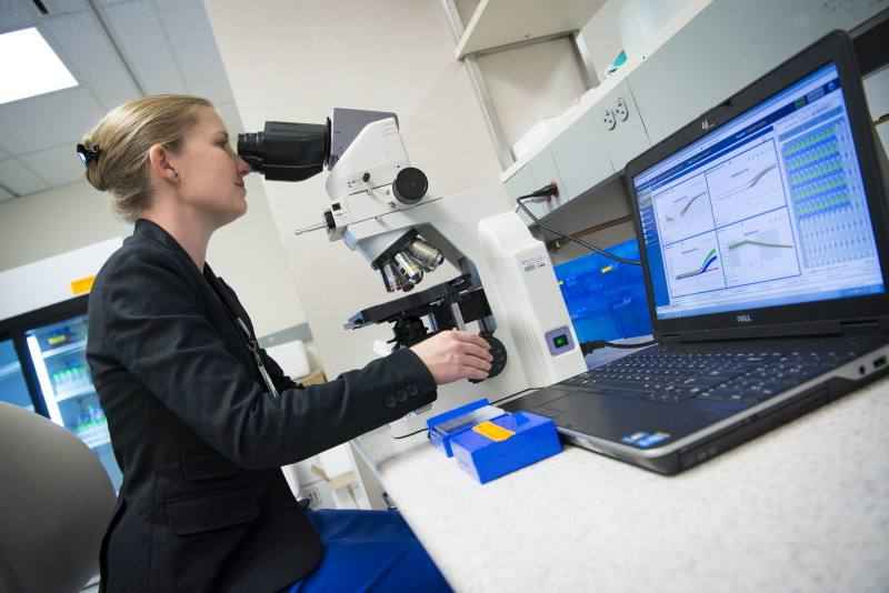 Mayo Clinic Pathology System Upgrade Resource Page - Insights