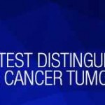 Tracing the Lineage of Lung Cancer Tumors