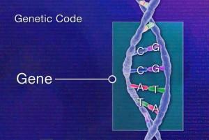 Epigenomics2