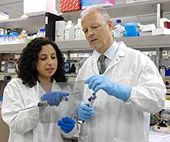 A clinician-investigator teams with a mentor in Mayo Clinic's Clinician-Investigator TrainingProgram.