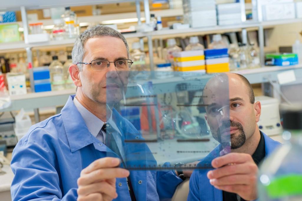 Lead authors Panos Anastasiadis, Ph.D., and Antonis Kourtidis, Ph.D.