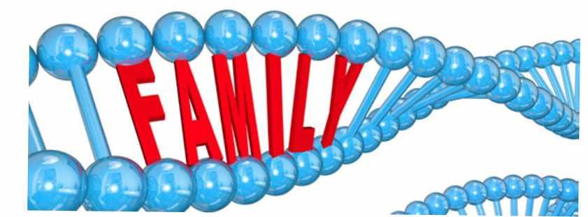 Brochure Panel Family