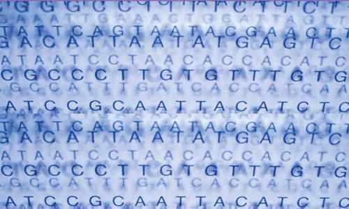Genetic code-WP