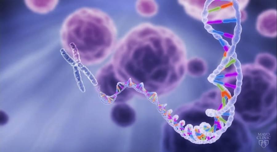 gene sequencing 3