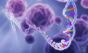 dna-illustrated-wp