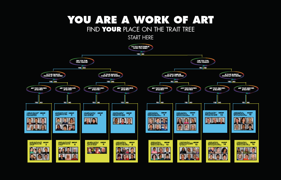 Find yourself on the Trait Tree - see genetics in action