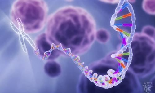 Rare, undiagnosed diseases are relatively common