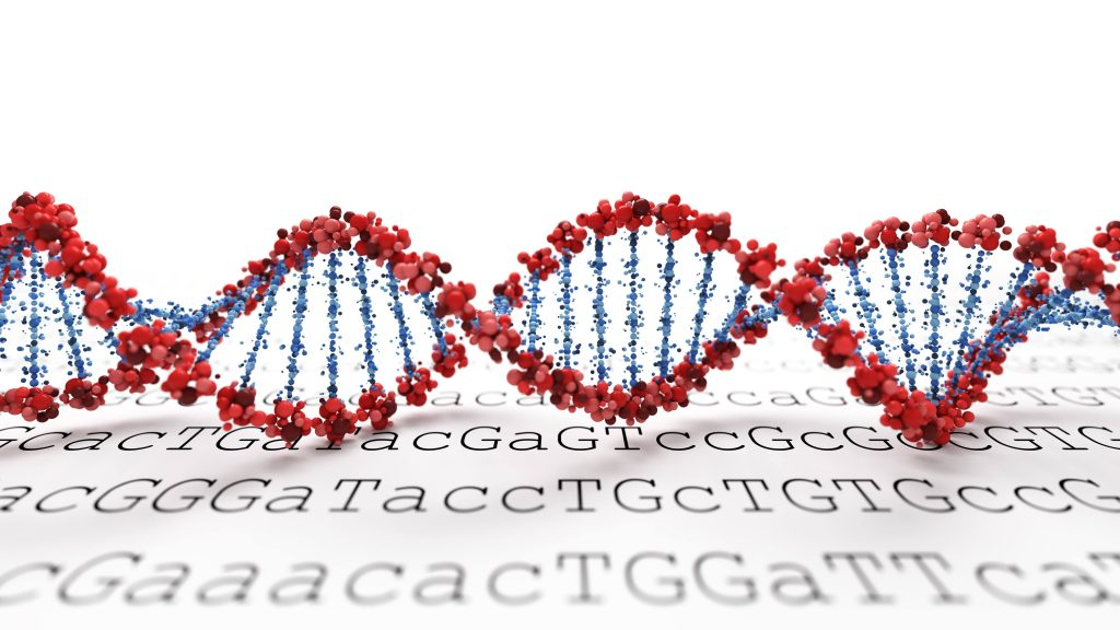 Considering a DNA test? Helpful tips before you take the plunge