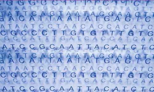 Mayo study explores benefits of genetic testing for healthy people