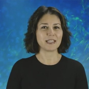 Moving closer to better options for ovarian cancer patients