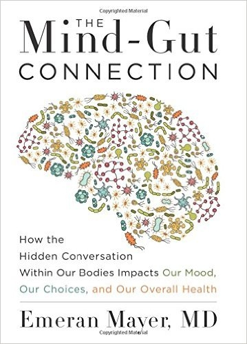The mind-gut connection – and the hidden conversation within our bodies