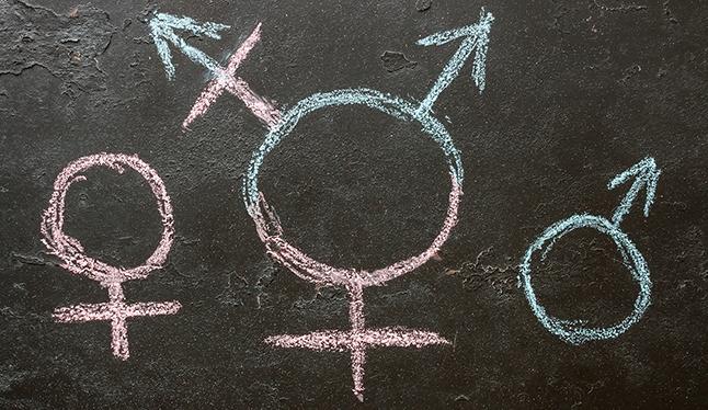 UCLA Gender Health Program seeks to break down barriers to care