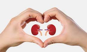 Kidney Smart Classes