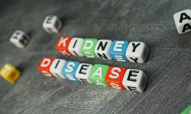 5 Things You Need to Know About Kidney Disease