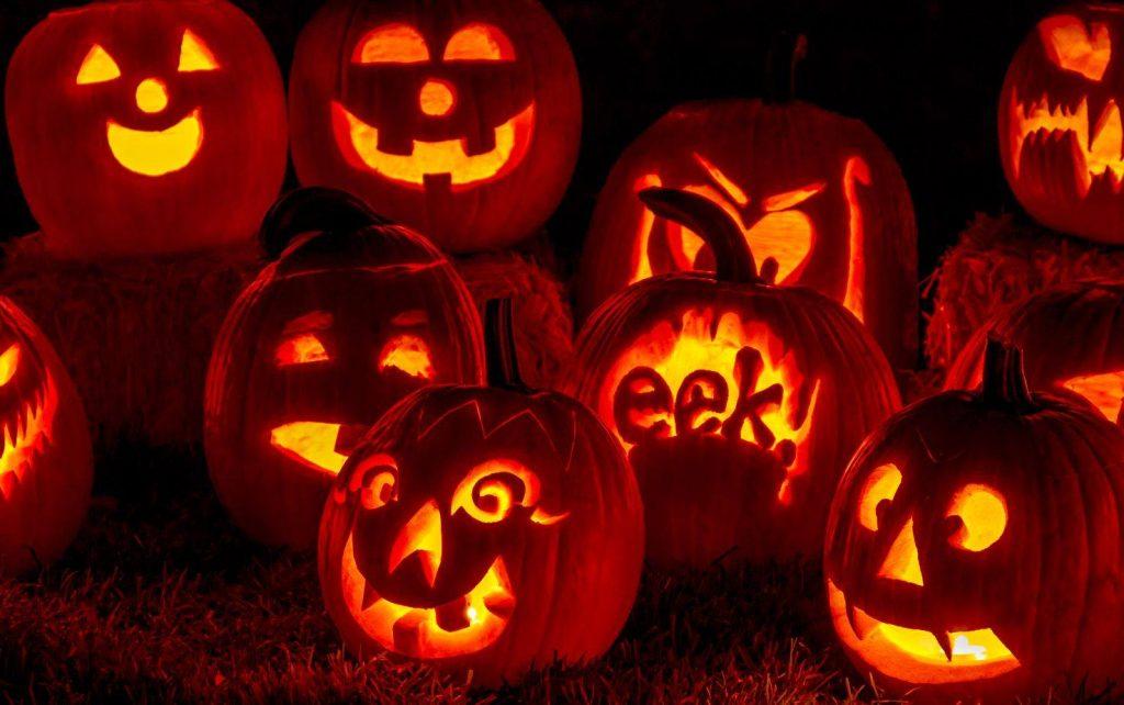 Pumpkin: More Than Just a Jack-O-Lantern
