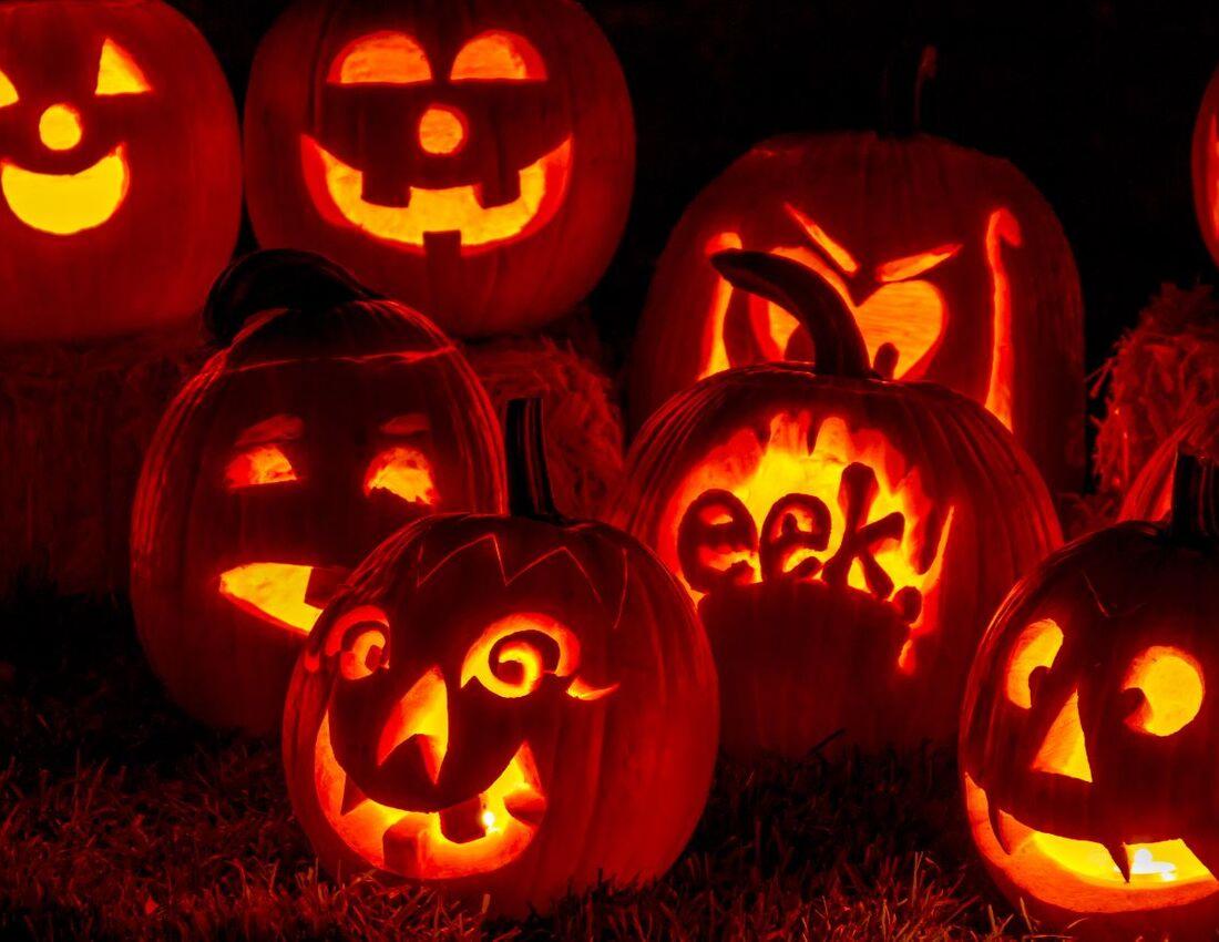Pumpkins: Not Just a Jack-O-Lantern